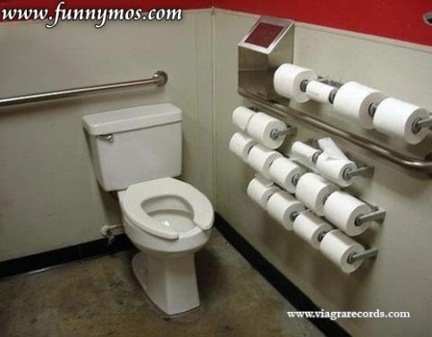 funny women toilet paper picture