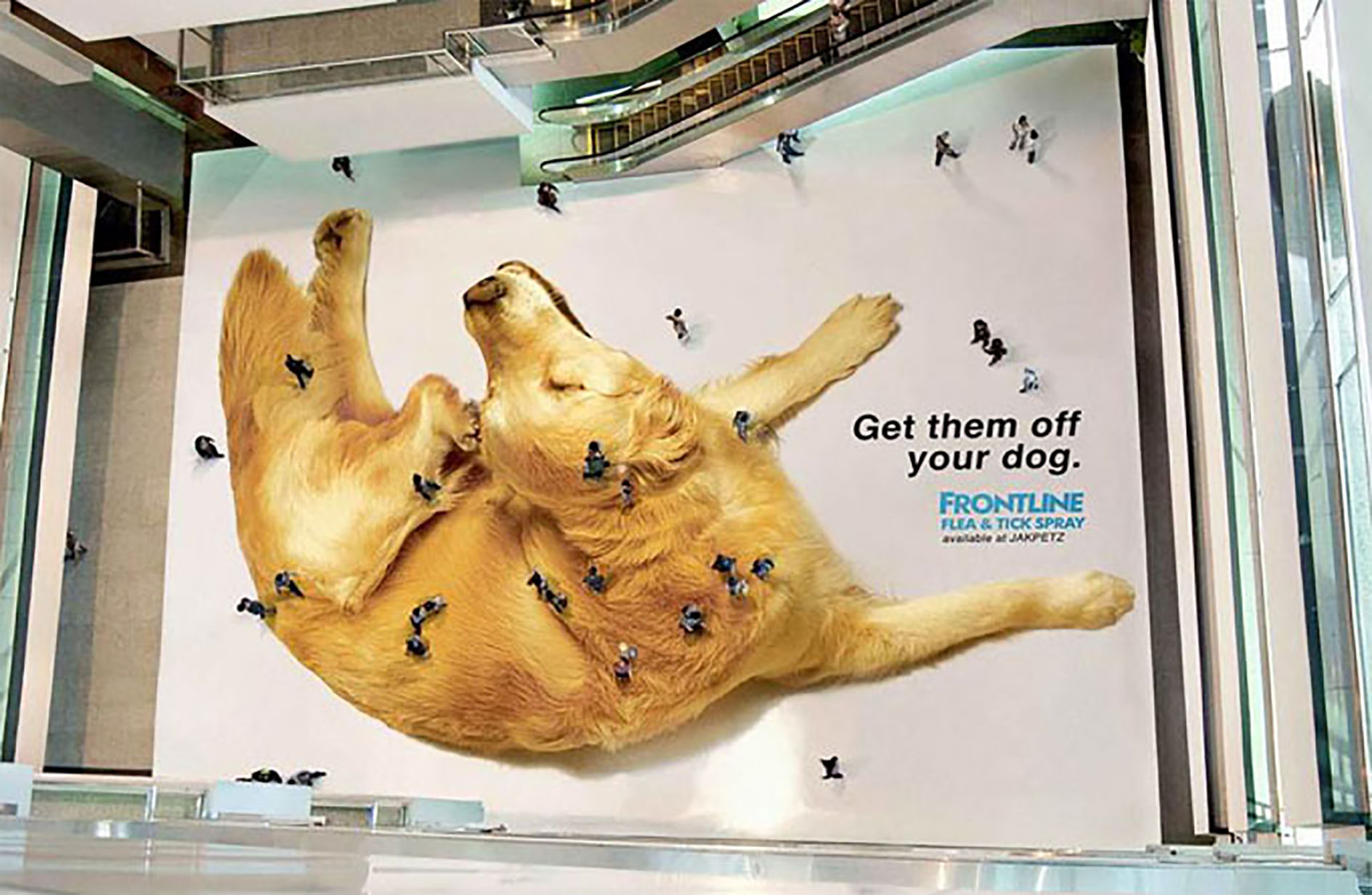 Got Fleas? Cutest Guerrilla Marketing Campaign