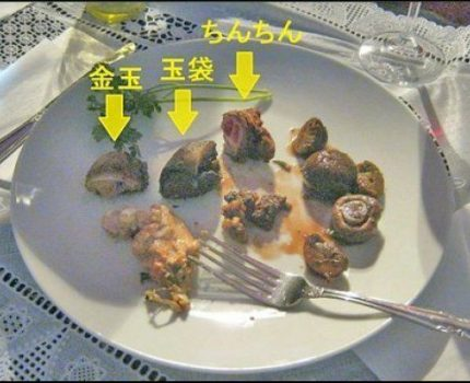Japanese Chef Cooks and Serves His Own Genitals